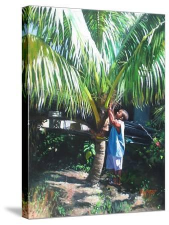 Coconut Shade, 2014-Colin Bootman-Stretched Canvas Print