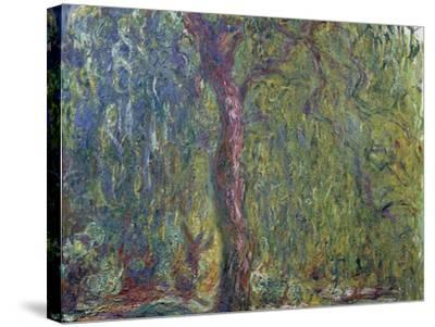 Weeping Willow, C. 1919-Claude Monet-Stretched Canvas Print