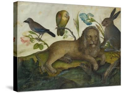 Animal Painting (Lion)-Hans Hoffmann-Stretched Canvas Print