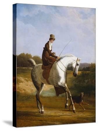 Miss Cazenove on a Grey Hunter-Jacques Laurent Agasse-Stretched Canvas Print