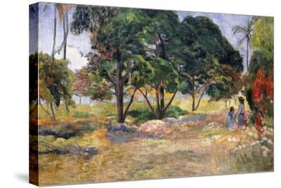 Landscape with Three Trees (Paysage Aux Trois Arbres), 1892-Paul Gauguin-Stretched Canvas Print