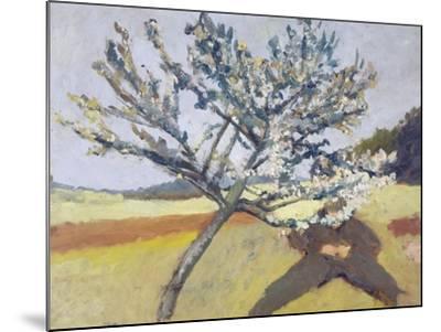 Liegender Mann Unter Bluehendem Baum, 1903-Paula Modersohn-Becker-Mounted Giclee Print