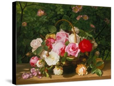 Basket of Roses, 1879-William Hammer-Stretched Canvas Print