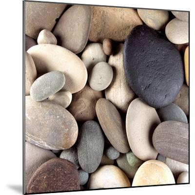Brown Pebbles--Mounted Premium Photographic Print