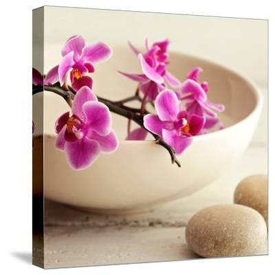 Zen Pebble--Stretched Canvas Print