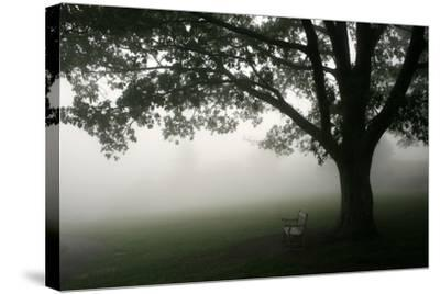 The Bench-PhotoINC-Stretched Canvas Print
