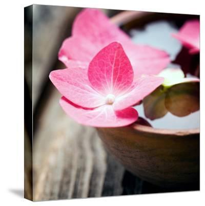 Zen Bowl--Stretched Canvas Print