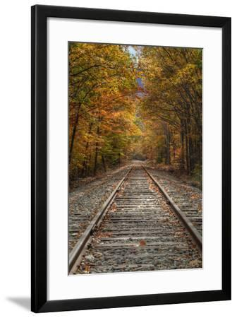 Autumn Tracks, New Hampshire-Vincent James-Framed Photographic Print