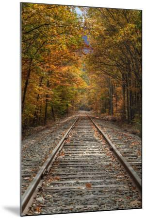 Autumn Tracks, New Hampshire-Vincent James-Mounted Photographic Print