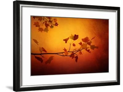 All Precious Things-Philippe Sainte-Laudy-Framed Photographic Print