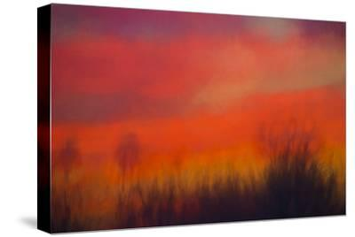 Inner Fire-Marco Carmassi-Stretched Canvas Print
