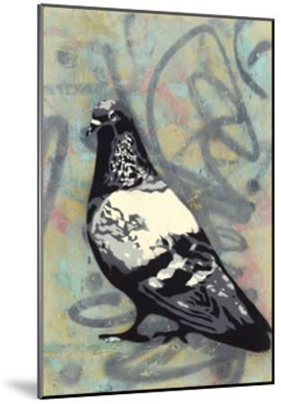 Rock Pigeon-Urban Soule-Mounted Premium Giclee Print