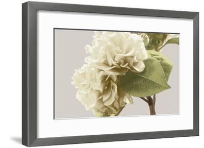 Vintage Florals G-GI ArtLab-Framed Premium Giclee Print