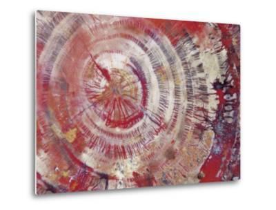 Petrified Wood, Close-Up--Metal Print