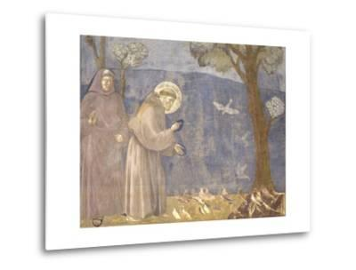 St. Francis Preaching to the Birds-Giotto-Metal Print