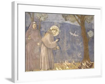St. Francis Preaching to the Birds-Giotto-Framed Art Print
