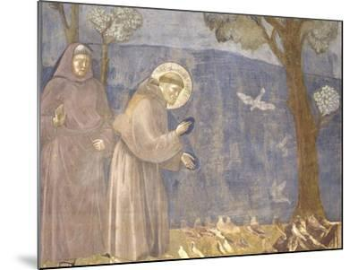 St. Francis Preaching to the Birds-Giotto-Mounted Art Print