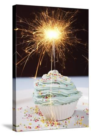 Single Cupcake with Lit Sparkler--Stretched Canvas Print