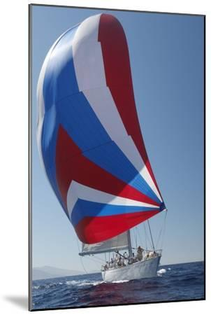 Sailing Boat in Yacht Race--Mounted Photo