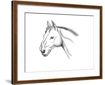 Horse Head Sketch-jim80-Framed Art Print