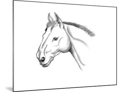 Horse Head Sketch-jim80-Mounted Art Print