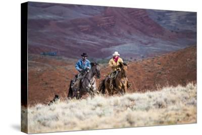 Cowboys at Full Gallop-Terry Eggers-Stretched Canvas Print