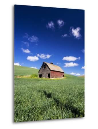 Old Red Barn in a Field of Spring Wheat-Terry Eggers-Metal Print