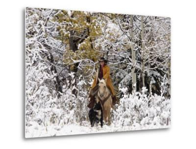 Cowgirl Riding in Autumn Aspens with a Fresh Snowfall-Terry Eggers-Metal Print
