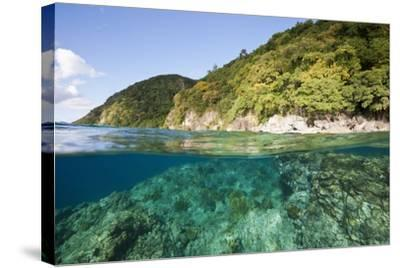 Coast of Dominica above and below Water-Reinhard Dirscherl-Stretched Canvas Print