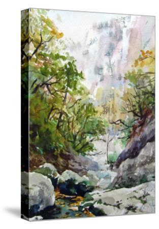 Mountain Stream-Igor-Stretched Canvas Print