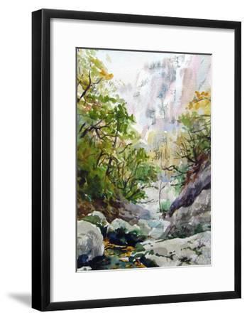 Mountain Stream-Igor-Framed Art Print