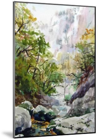 Mountain Stream-Igor-Mounted Art Print