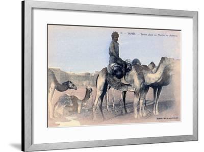 Serere, the Sahel, Senegal, 20th Century- Albaret-Framed Giclee Print