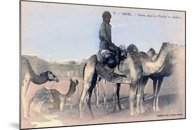 Serere, the Sahel, Senegal, 20th Century- Albaret-Mounted Giclee Print