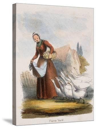 Farm Yard, C1845-Benjamin Waterhouse Hawkins-Stretched Canvas Print
