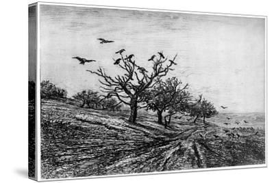 Arbre a Corbeaux, 1840-1875-Charles François Daubigny-Stretched Canvas Print