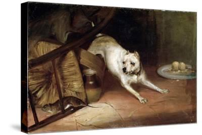 Dog Chasing a Rat, 19th or Early 20th Century-Briton Riviere-Stretched Canvas Print