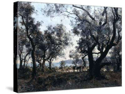 Olive Trees around Cap Martin, 1891-Emmanuel Lansyer-Stretched Canvas Print
