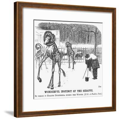 Wonderful Instinct of the Giraffe, 1865-George Du Maurier-Framed Giclee Print