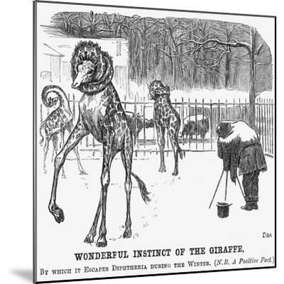 Wonderful Instinct of the Giraffe, 1865-George Du Maurier-Mounted Giclee Print