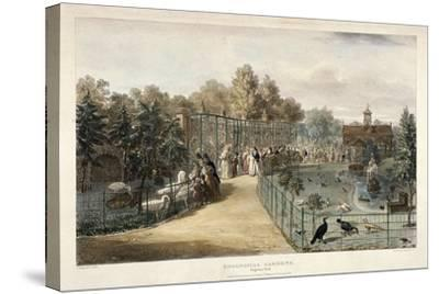 Zoological Gardens, Regent's Park, London, 1835-George Scharf-Stretched Canvas Print