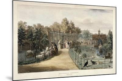 Zoological Gardens, Regent's Park, London, 1835-George Scharf-Mounted Giclee Print