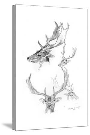 Stags' Heads, 1898-Henry Moore-Stretched Canvas Print