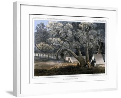 A Cotton Wood Grove, 1856-John Mix Stanley-Framed Giclee Print
