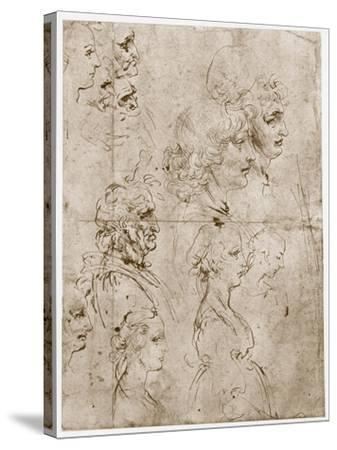 Heads of Girls, Young and Old Men, 1478-1480-Leonardo da Vinci-Stretched Canvas Print