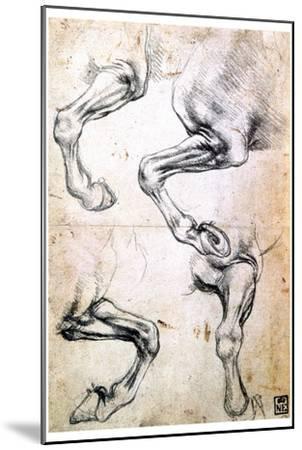 Four Studies of Horses' Legs, C1500-Leonardo da Vinci-Mounted Giclee Print