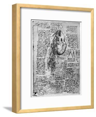 Study of the Heart and the Bronchial Arteries, Late 15th or Early 16th Century-Leonardo da Vinci-Framed Premium Giclee Print
