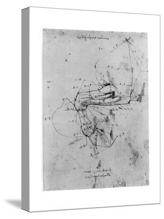 Study in Proportion of a Horse's Leg, Late 15th or Early 16th Century-Leonardo da Vinci-Stretched Canvas Print