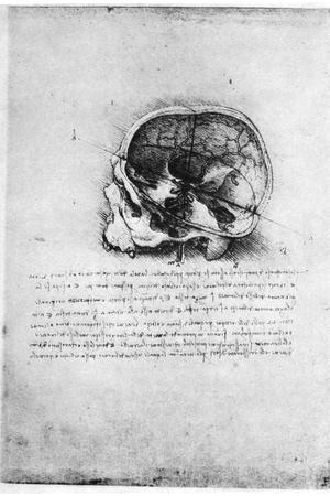 Study of a Human Skull, Late 15th or Early 16th Century-Leonardo da Vinci-Stretched Canvas Print