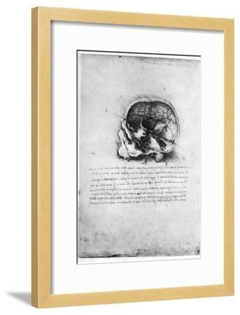 Study of a Human Skull, Late 15th or Early 16th Century-Leonardo da Vinci-Framed Giclee Print